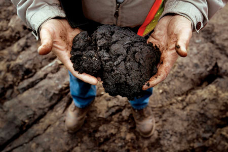 tar-sands-in-hands1.jpg